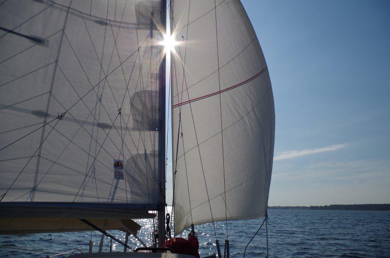 sunwind 311