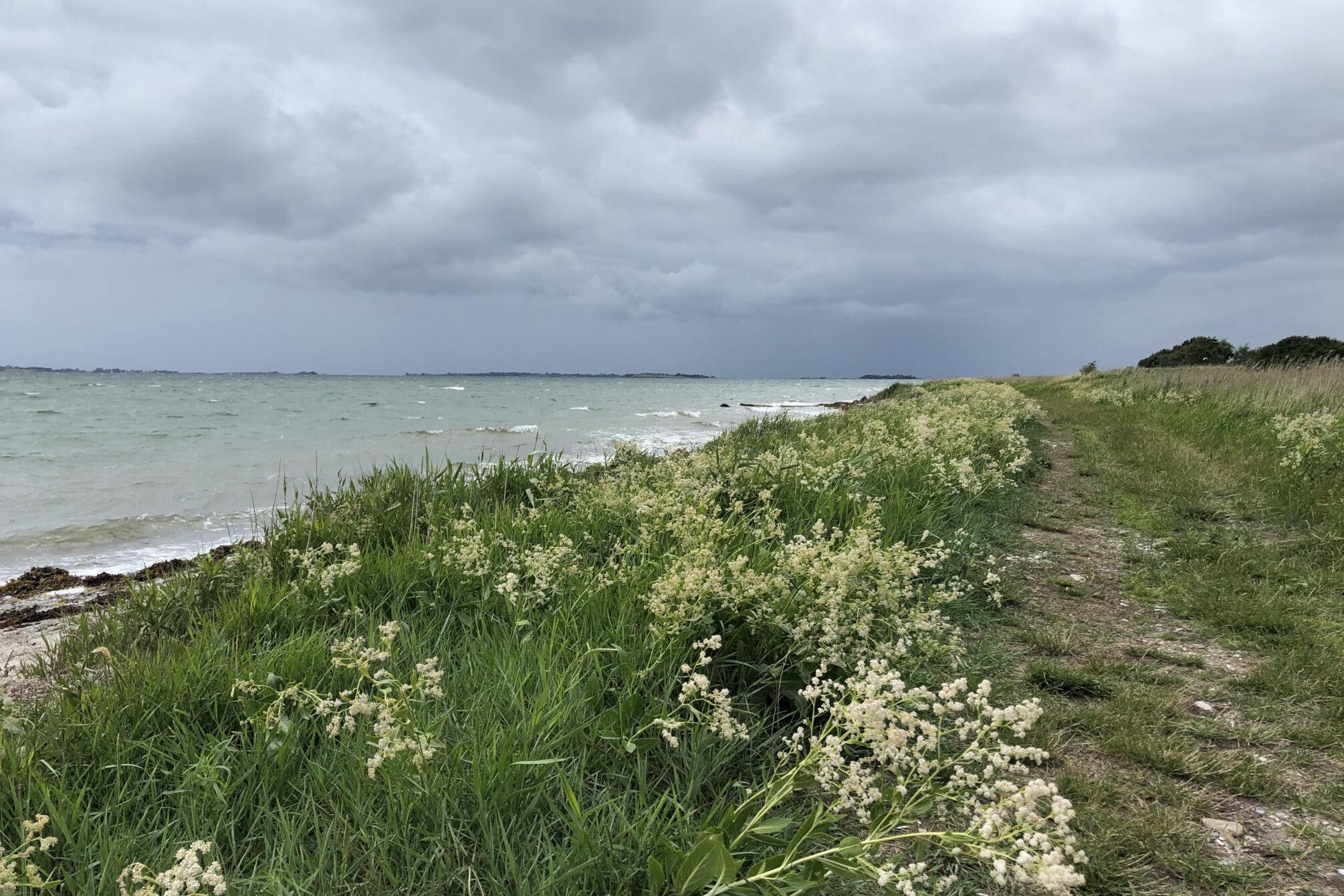 Trekking auf dem Øhavsstien