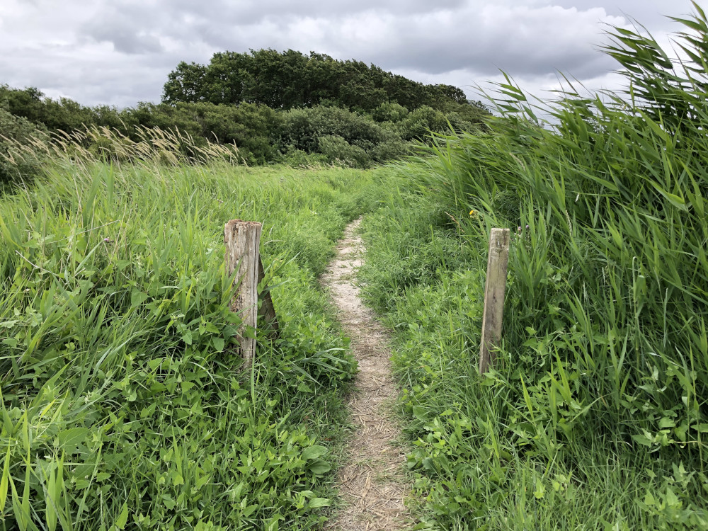 Trekking in Dänemark