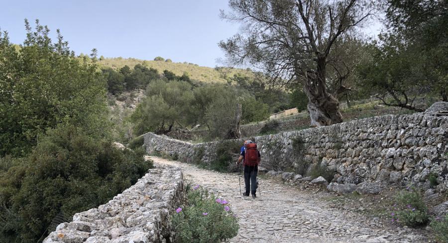 Weitwandern auf Mallorca